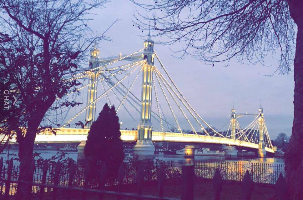 Things to do in Battersea Park Albert Bridge