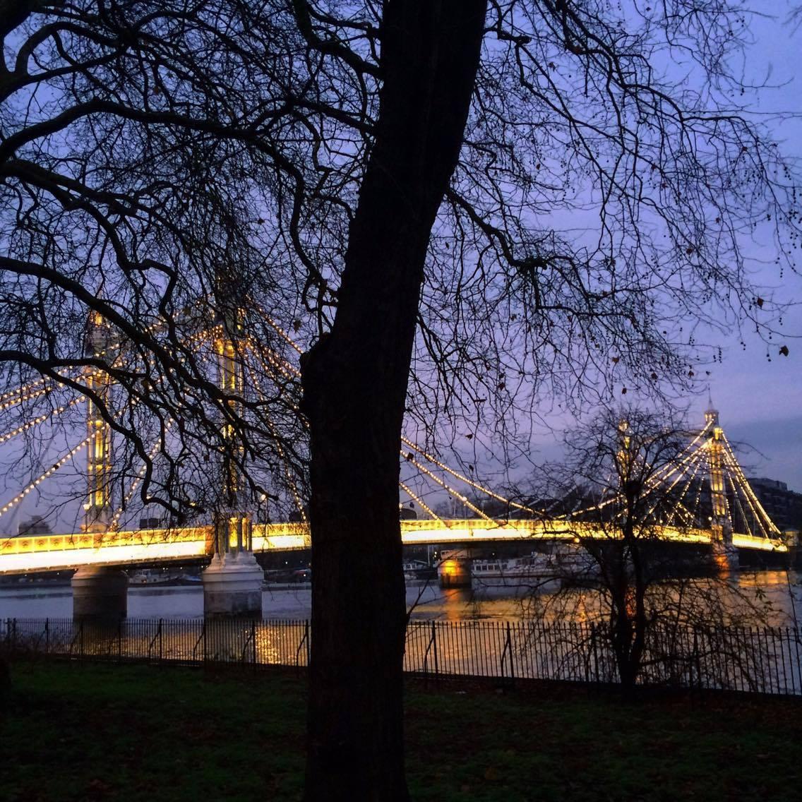 Things to do in Battersea Park Albert Bridge